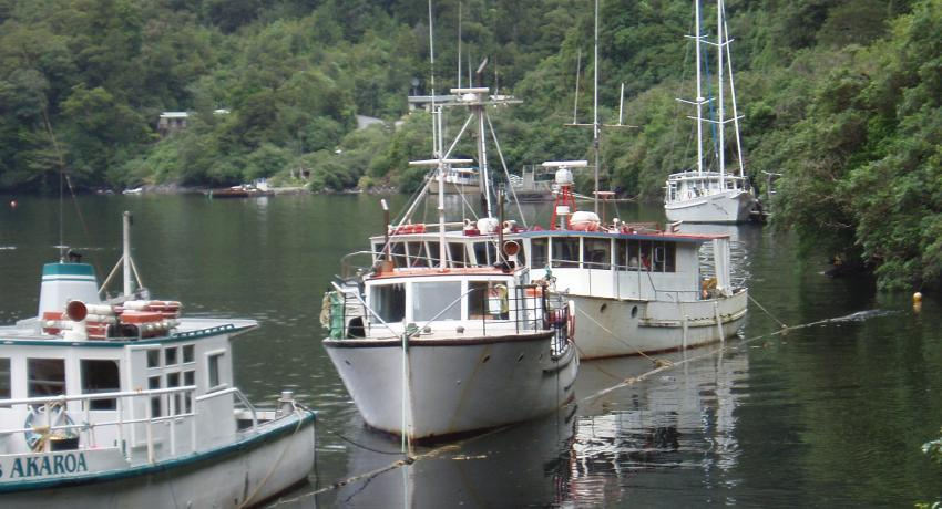 Moorings at Deep Cove